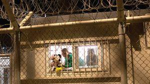 Eingesperrte Flüchtlingskinder im Hotspot Moria auf Lesbos. Foto: Salinia Stroux